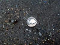 Монетка 3