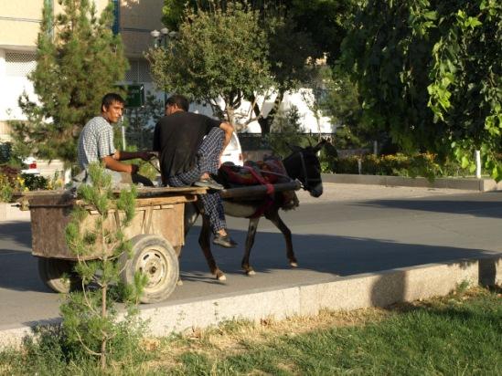 Сарты и татары 16171--10567878-m549x500