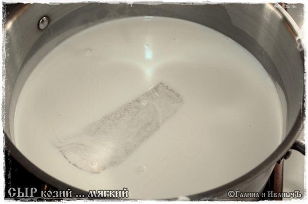 Сыр мягкий из козьего молока
