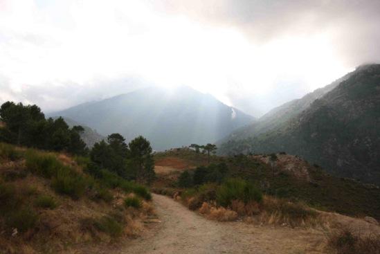 Road to Ajaccio, Corse